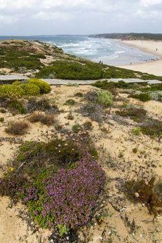 Bonitas vistas a las playas aisladas y la costa de Sagres, situado en el Algarve, Portugal.