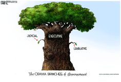 checks and balances political cartoon 2013 - Google Search