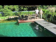 Schwimmteich Planung Bau - YouTube