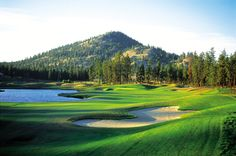 Black Bear Course Kelowna BC -- Curated by: Ultimate Social Club | #4 1900 46th avenue | 2505494418