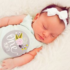 Hey, I found this really awesome Etsy listing at https://www.etsy.com/listing/191655968/baby-girl-monthly-stickers-stickers-for