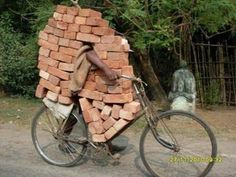 Brick transport by bike. Seek and find the biker / stenen transport per fiets Quelques Photos, Picture Day, Pic Pic, Belle Photo, Funny Photos, Funny Images, Funniest Pictures, Humorous Pictures, Bing Images