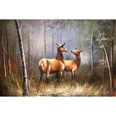 ON SALE! - Courting Couple - $56.99 - Deer - Hand Painted - Oil Paingings for Sale - Oil on Canvas - Cheap Canvas Art