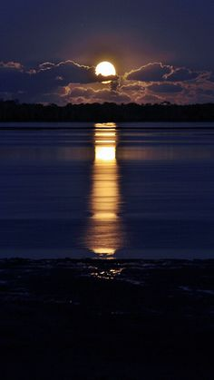 The wind has blown a warm yellow moon up over the sea; a bulbous moon, which sprouts in the soiled indigo sky, and spills bright winking petals of light on the quivering black water. Beautiful Moon, Beautiful World, Beautiful Scenery, Shoot The Moon, Moon Pictures, Moon Pics, Time Pictures, Blue Moon, Moon Moon