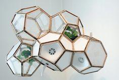 【エコ】植物の光合成で室内の空気をキレイにしてくれる超自然派の空気清浄機が登場 - IRORIO(イロリオ)