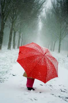 Red umbrella in winter I Love Winter, Winter Snow, Winter White, Winter Walk, Winter Fun, Umbrella Art, Under My Umbrella, Snow Scenes, Winter Scenes