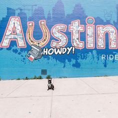 Dolly out and about in Austin, Texas!