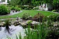 How to Build a Bog Filter for a Pond | eHow