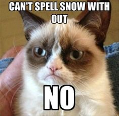 grumpy cat, you can not spell snow without no
