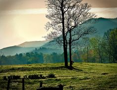 Cades Cove Sunrise: Cades Cove Sunrise