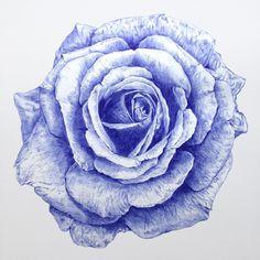 """""""Rose-001 - 2016″ - ballpoint pen on paper - 44cm x 44cm"""