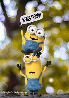 Minions, Funny Minion, Minion Rock, Minion Banana, Orange, Yellow, Spongebob, Cartoon Drawings, Cheryl