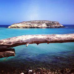 Italy, Sicily, Lampedusa Isola dei Conigli