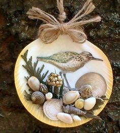 Sea Bird on Sea Shell Ornament by CarmelasCoastalCraft on Etsy, $10.50