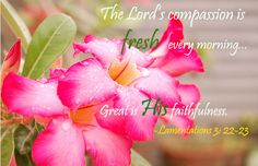 Lamentations The Lord's compassion is fresh every morning.