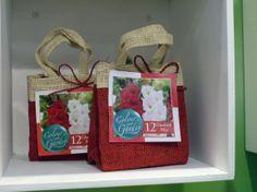 Blumenzwiebeln und Knollen werden oft sehr lieblos in Kunststoffverpackungen angeboten. Verpackt in eine kleine Tasche sind sie dahingegen ein schönes Geschenk. #homestory #homestoryde #home #tipps #garten #garden #pflanzen #plants #flowers #news