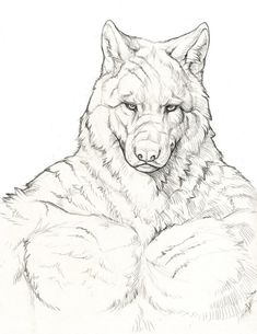 Creature Drawings, Animal Drawings, Werewolf Art, Arte Robot, Wolf Love, Anime Furry, Anthro Furry, Cool Art Drawings, Human Art