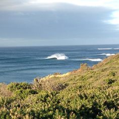 Offshore day at Jan Juc... #janjuc #surfing by surfersinsuits http://ift.tt/1X8VXis