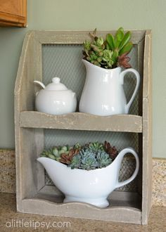 Decorating with Succulents (I like this little primitive shelf thing.)
