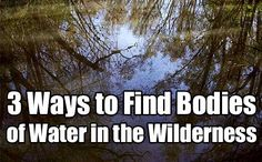 What happens if the SHTF and you need to bug out to the wilderness? These 3 tips will help you to find water, vital to your survival, when you're out there.
