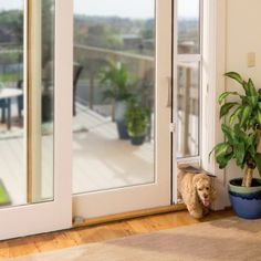 Petsafe Freedom Sliding Glass Pet Door Patio