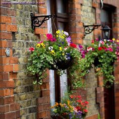 Love hanging flower baskets...want to put these on either side of the deck doors!!