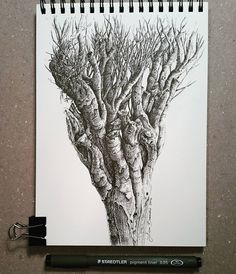 Lidia Barragán. #sketch #tree #nature #sketchbook #dibujo #cuaderno #arbol #steadtler #fineline