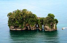 Bocas del Toro (Panamá): Isla Pájaro