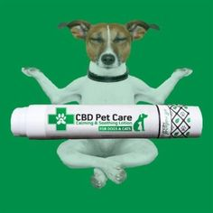 CBD Pet Care Calming and Soothing Lotion
