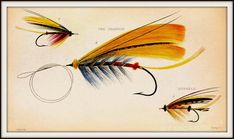 The Graffical Muse: 4 Pages of Vintage Fly Fishing Lures Fly Fishing Lures, Best Fishing, Fishing Tips, Fishing Stuff, Salmon Flies, Vintage Fishing, Fish Art, Fly Tying, Vintage Images