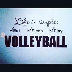#volleyball #volley #volleyballislife #volleyballplayer #life #volleyballgirls #tag #giba #bruno #brazilian #brazil #