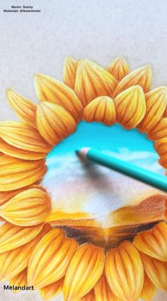 Sunflower Drawing Video