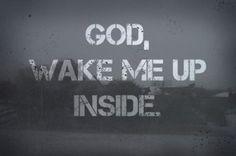God, wake me up inside