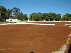 Rooibos Drying court