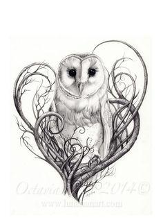Barn Owl Print  Owls  Limited Edition Giclée Print  by Lunarianart: