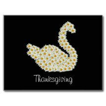 Daisy Swan Thanksgiving Day Greeting Postcard
