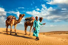 Rajasthan Tour Packages - Book Rajasthan packages at best price with Royal Adventure Tours. Click now to get best offers on Rajasthan holiday packages. Jaisalmer, Jaipur, Rajasthan India, Abu Dhabi, Dubai, India Holidays, Visit India, Ethereal Beauty, Tourist Places
