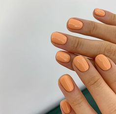 Nails orange manicure inspo Burnt Orange Nails for Fall Halloween Nail Colors, Halloween Nails, Trendy Halloween, Halloween Halloween, Trendy Nails, Cute Nails, My Nails, Shellac Nails Fall, Essie