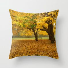 A Place To Contemplate Pillow Cover Autumn by machelspencePHOTO  It's photography art for your couch or anywhere else you display your pillows!