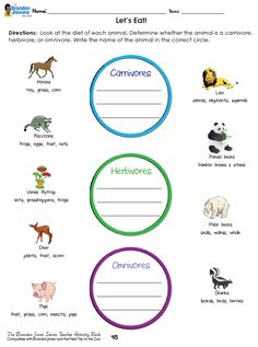 *Free download!* Let's Eat [Omnivores, Carnivores, & Herbivores] - Students use the diets of different animals to determine what type of eater they are.