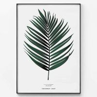 메탈 모던 보타니컬 자연 포스터 액자 코코넛 나뭇잎
