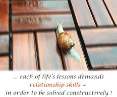 ... each of #life's #lessons demands #relationship #skills ~ in order to be solved constructively !
