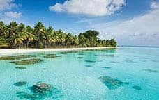 Sparkling South Pacific