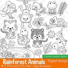 Rainforest animals Digital Stamps Clipart