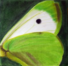 Green butterfly for hope
