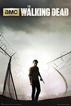 The Walking Dead Season 4 Key Art Poster 24 x 36in