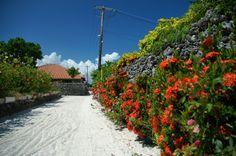 Taketomi island, Okinawa, Japan.
