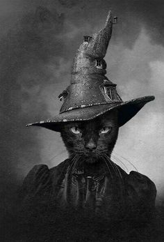 Black Cat Witch - The Cat in the Magical Hat. Fröhliches Halloween, Halloween Images, Vintage Halloween, Vintage Witch, Halloween Black Cat, Crazy Cat Lady, Crazy Cats, Witch Cat, Cat Love