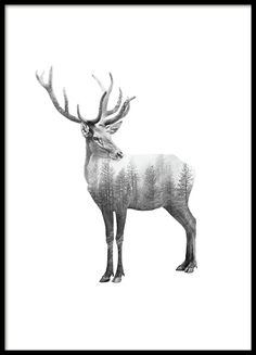 A black and white poster of a reindeer/deer and elements of a forest. Graphic photo art, looks great in one of our frames and it is perfect if you want to create a stylish but interesting wall. www.desenio.com