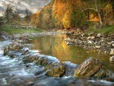 río color dorado